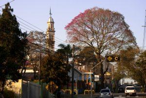 Mudanças Comerciais Curitiba